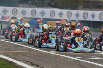 60 MINI   Nicola Abrusci ((Tony Kart Lke), CAMPIONATO ITALIANO ACI KARTING