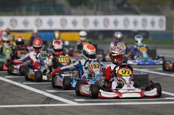 KZ2   Massimo Mazzali (Art Lke), ITALIAN ACI KARTING CHAMPIONSHIP