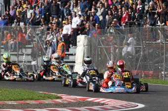 Prodriver Over   Marco Ruschioni (Energy Tm), ITALIAN ACI KARTING CHAMPIONSHIP