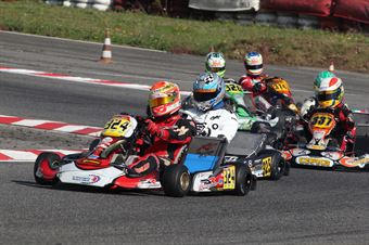 Prodriver Under   Antonio Casolare (DR Tm), ITALIAN ACI KARTING CHAMPIONSHIP